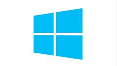 MS: Windows 8.1