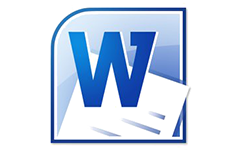 MS: Word 2010